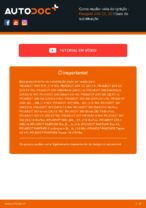 BERU 0002235901 para 206 CC (2D) | PDF tutorial de substituição