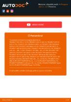 Kdaj zamenjati Vzigalna svecka PEUGEOT 206 CC (2D): pdf navodila
