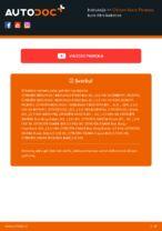 PDF Instrukcija remonto auto dalys: XSARA PICASSO (N68)