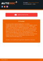 Útmutató PDF letöltés