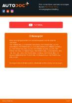 PDF handleiding voor vervanging: Schijfremmen FIAT PANDA (169) achter en vóór