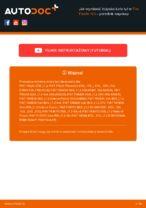 Darmowe instrukcje online jak odnowić ożysko piasty koła FIAT PANDA (169)