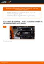 Wie Verschleißanzeige Bremsbeläge SKODA FABIA austauschen und anpassen: PDF-Anweisung