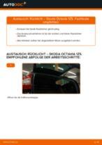 Hinweise des Automechanikers zum Wechseln von SKODA Octavia 1z5 1.6 TDI Stoßdämpfer
