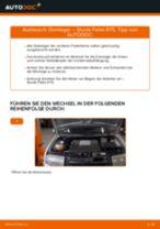 SKODA FABIA Combi (6Y5) Koppelstange vorne links tauschen: Handbuch pdf