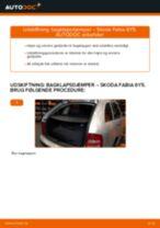 Online gratis instruktioner hvordan skifter man Gasfjeder bagklap SKODA FABIA Combi (6Y5)