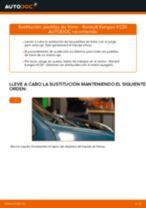 Manual de taller para Renault Kangoo 2 Express en línea