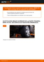 Cómo cambiar y ajustar Brazo oscilante BMW X5: tutorial pdf