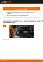 How to replace and adjust Ignition Coil : free pdf guide