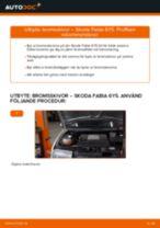 När byta Bromsskiva SKODA FABIA Combi (6Y5): pdf handledning