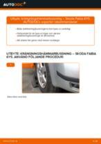 Upptäck vår informativa guide om hur du felsöker problem med Hjulupphängning och Armar