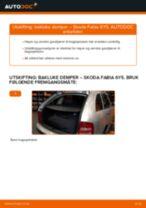 Mekanikerens anbefalinger om bytte av SKODA Skoda Fabia 6y5 1.9 TDI Endeledd