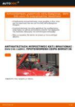 Πώς αλλαγη και ρυθμιζω Λάδι κινητήρα BMW 3 SERIES: οδηγός pdf