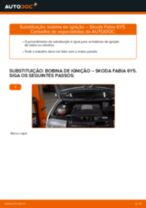 Recomendações do mecânico de automóveis sobre a substituição de SKODA Skoda Fabia 6y5 1.9 TDI Apoios de Motor