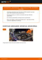 Käsiraamat PDF ASTRA hoolduse kohta