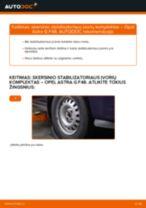 Instrukcijos PDF apie ASTRA priežiūrą