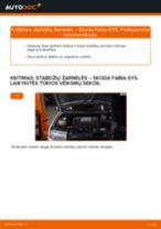 Automechanikų rekomendacijos SKODA Skoda Fabia 6y5 1.9 TDI Amortizatoriaus Atraminis Guolis keitimui