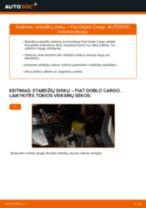 Instrukcijos PDF apie DOBLO priežiūrą