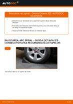 PDF manual pentru întreținere OCTAVIA