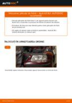 Montare Placute Frana AUDI A3 (8L1) - tutoriale pas cu pas