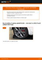 Cum să schimbați: flansa amortizor din spate la VW Golf 6 | Ghid de înlocuire