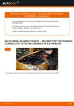 Tutorialul etapizat în format PDF pentru înlocuirea Bucsa Bara Stabilizatoare la Golf 4
