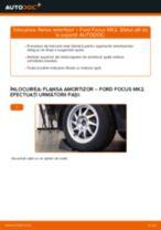 Cum să schimbați: flansa amortizor din spate la Ford Focus MK2 | Ghid de înlocuire