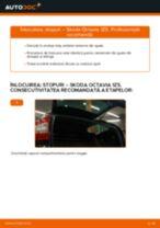Schimbare: stopuri >> Skoda Octavia 1Z5 | Ghidul de înlocuire