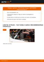 Hur byter man och justera Glödlampa Skyltbelysning FIAT DOBLO: pdf instruktioner