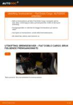 Mekanikerens anbefalinger om bytte av FIAT Fiat Doblo Cargo 1.3 D Multijet Støtdemper