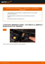 Skifte Glødelampe Nummerskiltlys FIAT BRAVA: verkstedhåndbok