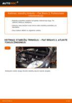 124 Sedanas (124) 2017 online vadovas