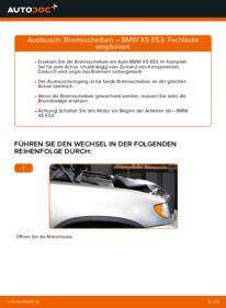 Wie der Wechsel durchführt wird: Bremsscheiben 3.0 d BMW E53 tauschen