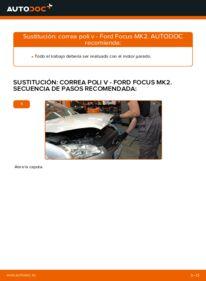 Cómo realizar una sustitución de Correa Poly V en un FORD FOCUS