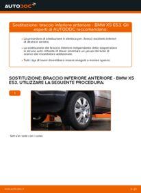 Come effettuare una sostituzione di Braccio Oscillante su BMW ? Dai un'occhiata alla nostra guida dettagliata e scopri come farlo