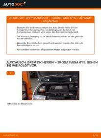 Wie der Wechsel durchführt wird: Bremsscheiben 1.4 16V Skoda Fabia 6Y5 tauschen