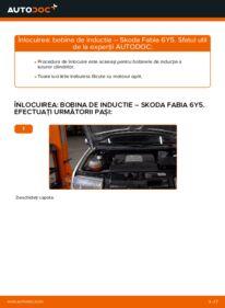 Cum să efectuați înlocuirea: Bobina inductie la 1.4 16V Skoda Fabia 6y5