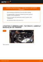 Veiledning på nettet for å skifte Blinklyspære i FORD TRANSIT MK-7 Platform/Chassis selv