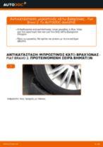 Πώς αλλαγη και ρυθμιζω Ψαλίδια αυτοκινήτου FIAT BRAVA: οδηγός pdf