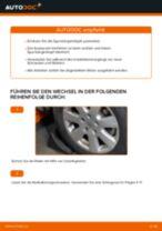 Hinweise des Automechanikers zum Wechseln von VW VW T4 Transporter 2.4 D Bremsschläuche