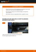Hinweise des Automechanikers zum Wechseln von VW Polo 9n 1.2 12V Bremsscheiben