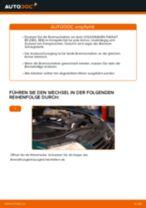 Ersetzen von Axialgelenk Spurstange VW PASSAT: PDF kostenlos
