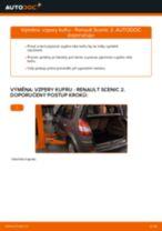 Online průvodce zdarma jak obnovit Plynová vzpěra pátých dveří RENAULT SCÉNIC II (JM0/1_)