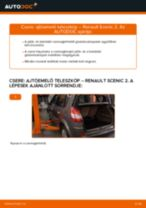 Hogyan cseréje és állítsuk be Féknyereg Tartó RENAULT SCÉNIC: pdf útmutató