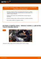 Automechanikų rekomendacijos RENAULT Renault Scenic 2 1.5 dCi Valytuvo gumelė keitimui