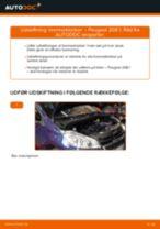 Hvordan skifter man og justere Bremseklods bag og foran: gratis pdf guide