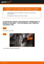 Udskiftning af Bremsekaliber Reparationssæt FIAT DOBLO MPV (152, 263): manual pdf