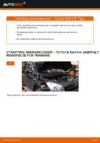 Montering Baklyspære TOYOTA RAV 4 III (ACA3_, ACE_, ALA3_, GSA3_, ZSA3_) - steg-for-steg manualer