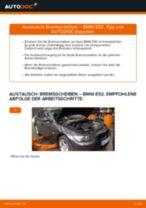 BMW Z4 Roadster (G29) Bremsscheiben wechseln hinten und vorne Anleitung pdf