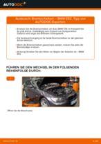 Peugeot 207 Limousine Bremssattelhalter wechseln vorne links rechts Anleitung pdf